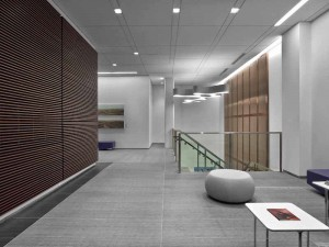 Gray Modern Floor paver